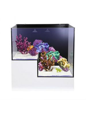 Nuvo Concept Abyss Panorama 20 Gallon Drop Off Aquarium - Innovative Marine