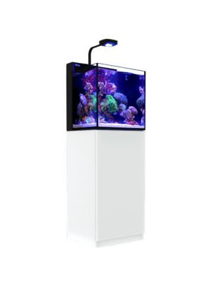 Max Nano 20 Gallon WHITE or Black (Tank & Stand) w/AI Prime LED Complete Reef System - Red Sea