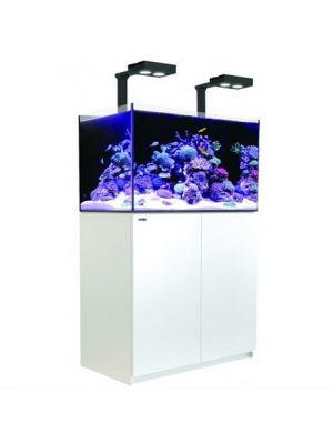 WHITE Reefer DELUXE 425 XL  w/Two Hydra 26 HD LED 112 Gallon Aquarium  - Red Sea