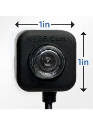REEF-Cam Waterproof Live WIFI Streaming Video Camera - IceCap