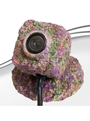 REEF-Cam Concealed Lens Enclosure + Base - IceCap