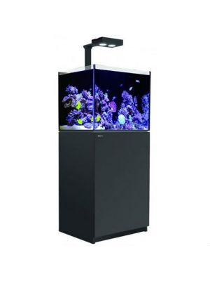 170 - 43 Gallon Aquarium Black w/One Hydra 26 HD LED Reefer DELUXE  Red Sea
